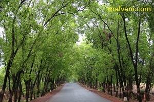 Vaibhavwadi